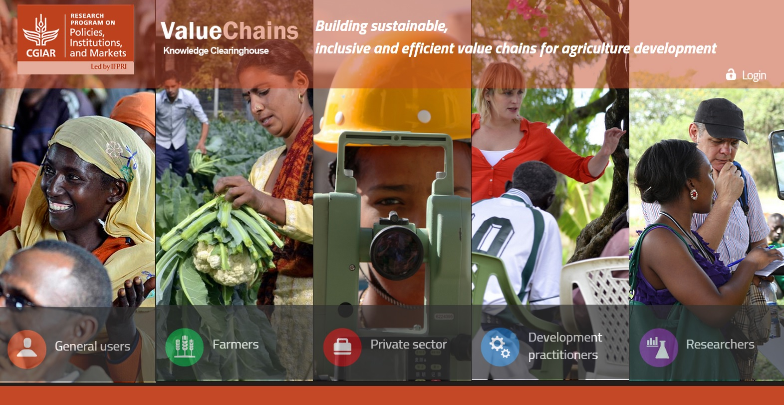 IFPRI Value Chain